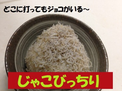 food-djokovic4-micchi
