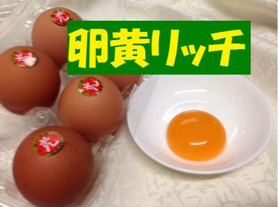 food-raonic2-micchi