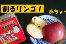 food-wawrinka7-micchi20161114