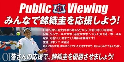 publicviewing